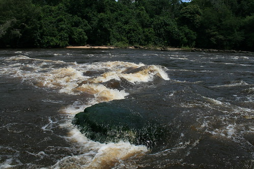 Lomami rapids_high water
