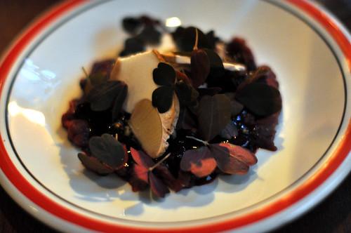 Tartar med brombær og svampe