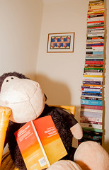 The sheep and the impossible bookcase 1