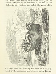 """Image taken from page 95 of 'Narrative of the Wreck of the """"Favourite"""" on the Island of Desolation: detailing the adventures, sufferings and privations of J. Nunn, an historical account of the Island, and its whale and seal fisheries. Edited by W. B. Clar"""