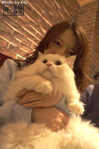 cat_5th (36)