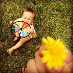 A dandelion from Aidan :)