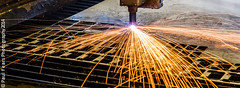 Bunting Europe Laser Cutter