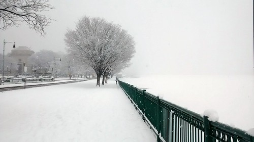 Memorial Drive near MIT