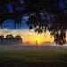 Sunrise over an early morning fog by Don Sullivan