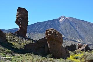 Roque Cinchado...