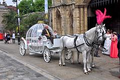 Fantasy Horse Drawn Wedding Carriage