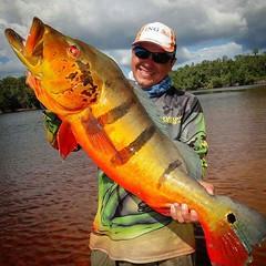 Joelson com um açú fisgado em Santa Isabel do Rio Nerfo-AM. #pescaamadora#pesqueesolte #baitcast #fly#pescaesportiva #sportfishing#fishing #flyfishing #fish#bassfishing #bass #angler#anglerapproved #monsterfish#bigfish #bassmaniacs#catchandrelease