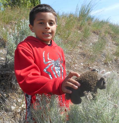 Sinlahekin Wildlife Area, WA