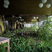 Welcome to the jungle. by Southern Urbex