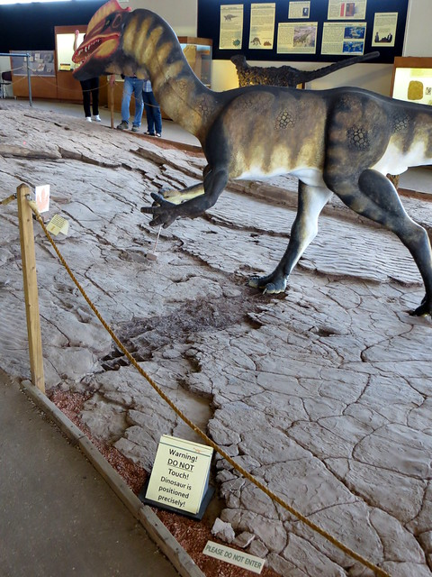 Dinosaur Tracks at Johnson Farm