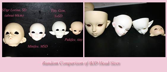 head comparison