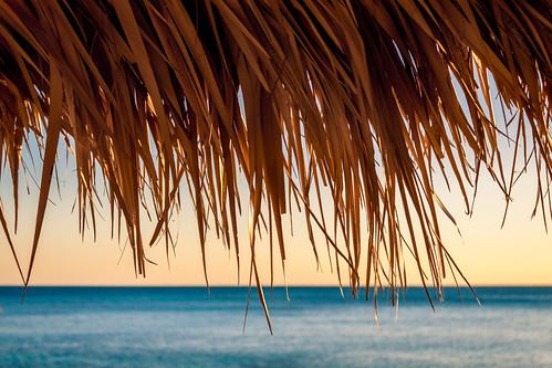 Le 29 décembre 2010 à Cuba.<a href='http://www.mattfolio.fr/boutique/635/'><span class='font-icon-shopping-cart'></span><span class='acheter'> Acheter</span></a>