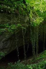 Entrée de la Grotte de la Baume Noire de Fretigney...