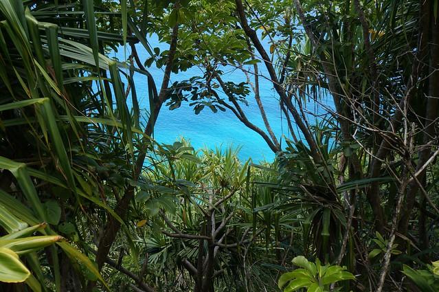 On the Kalalau - 16