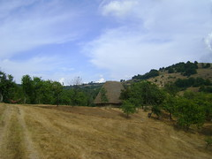preluca-un loc de poveste/preluca-a wonderful place