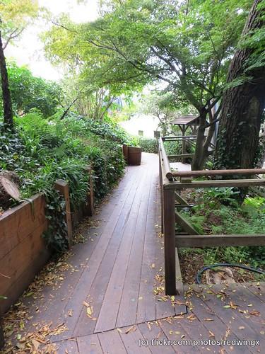 Filbert_woodenwalk