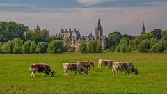 Oxford, England Highlights