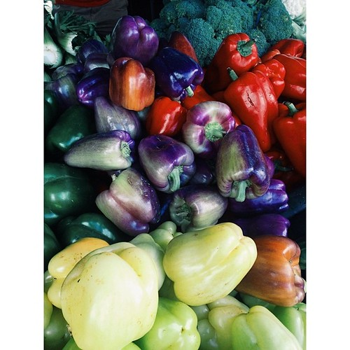 Gorgeous #color #veggies at the Coral Springs Green Market.