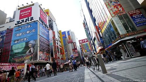 Akihabara Shops 11