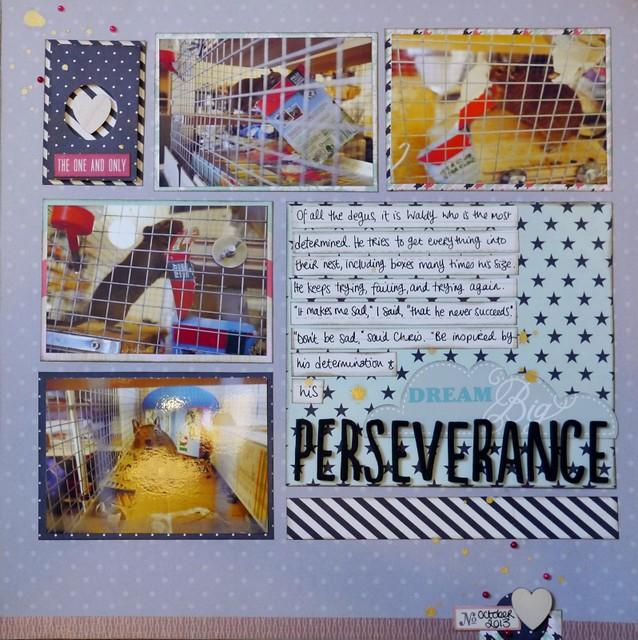 1013-50-Perseverance