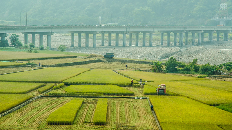 Taichung to Taipei scenery