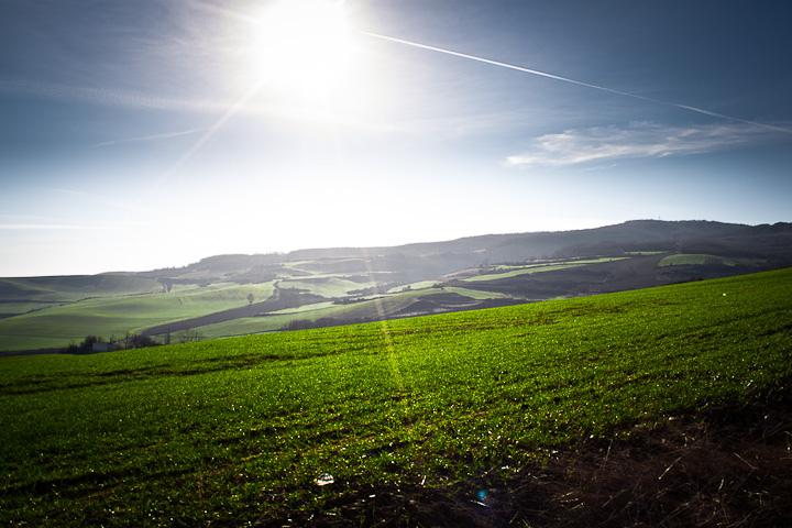 5. Campos de Belorado a finales del invierno. Burgos. Autor, Davidmiguel.com
