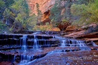 Zion - Angel Falls