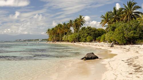 mer paysage plage bois guadeloupe jolan