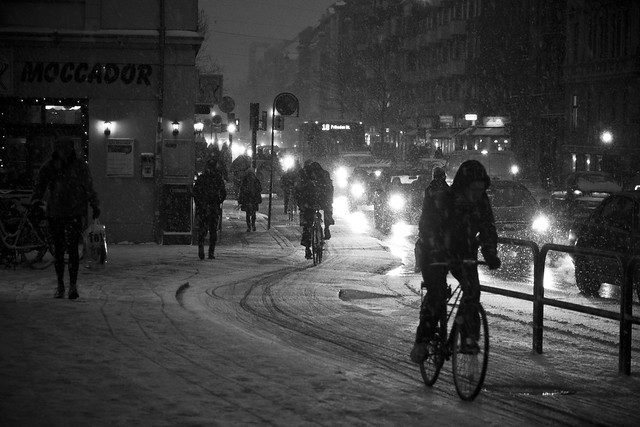 Viking Biking_6
