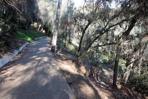 Marston Canyon