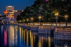 Bellagio Viewing Area