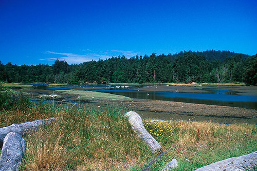 Witty's Lagoon Park, Metchosin, Victoria, Vancouver Island, British Columbia