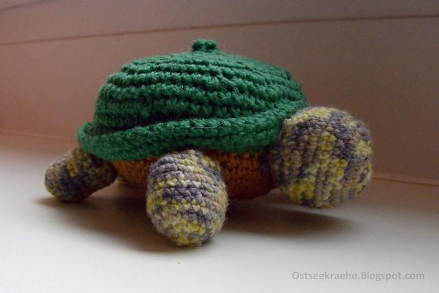 Schildkröte1