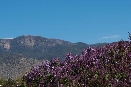 to Albuquerque-3.jpg