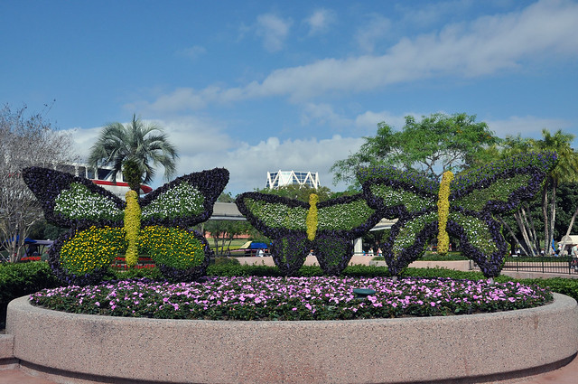Butterfly topiaries