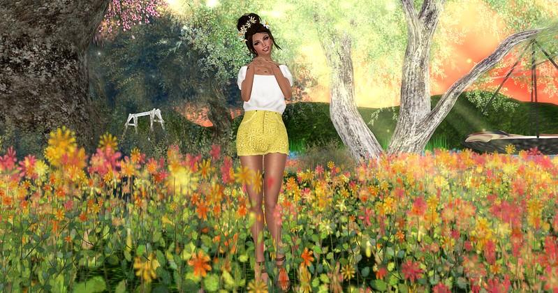 085. Flower Field A