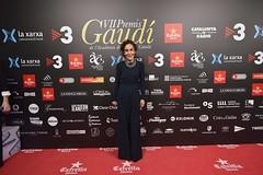 Catifa vermella VII Premis Gaudí (56)