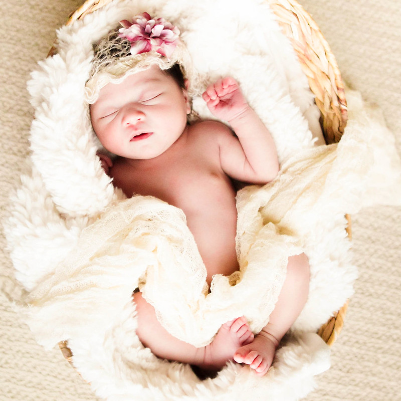 cute & little blog | kennedy newborn photoshoot