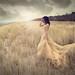 The illumination by Miss Froggi Photography