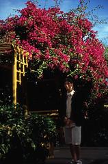 Ägypten 1999 (066) Assuan: Botanischer Garten, Elnabatat's Island