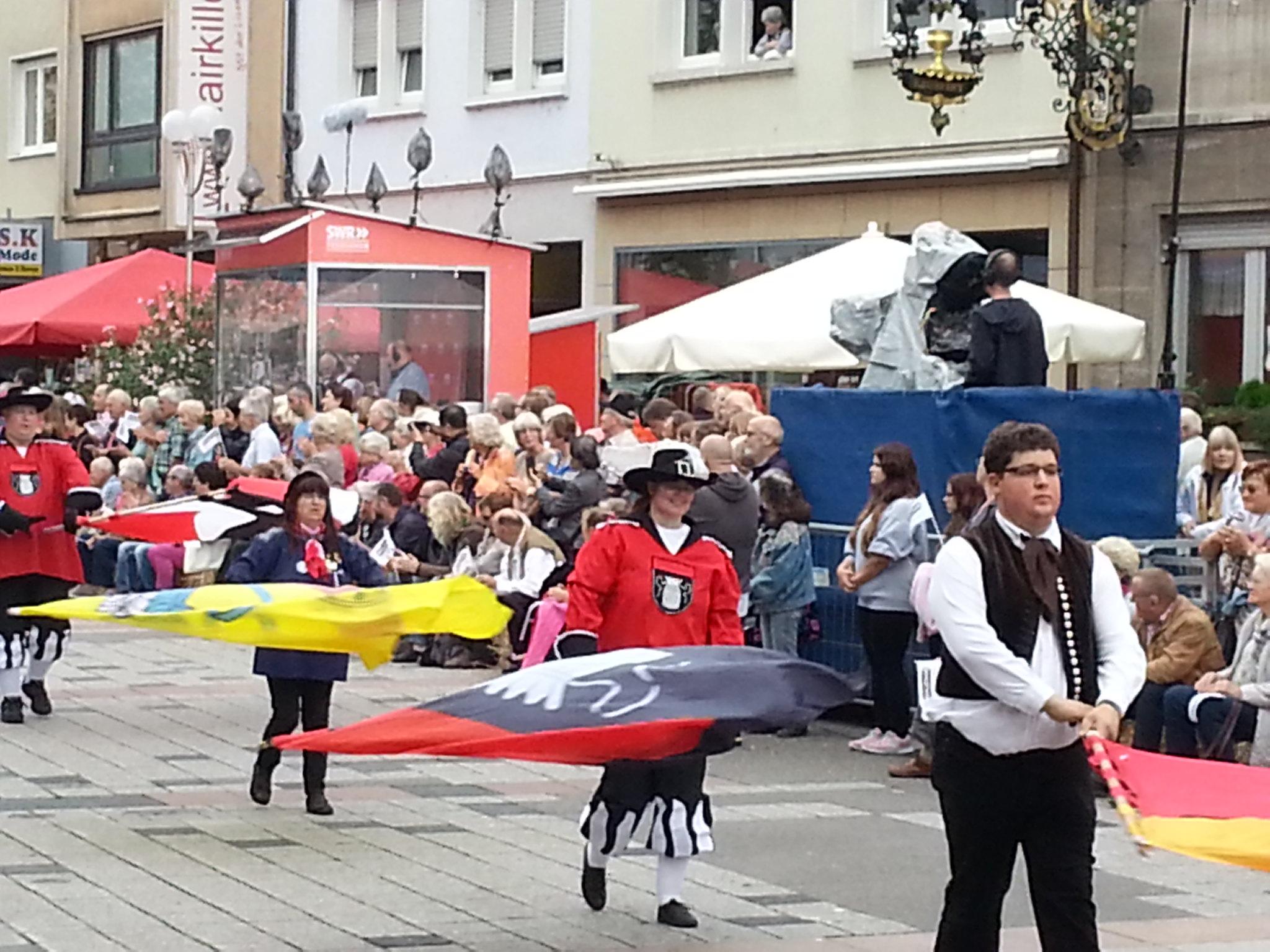 Landesfestumzug Bruchsal 2015 (7)