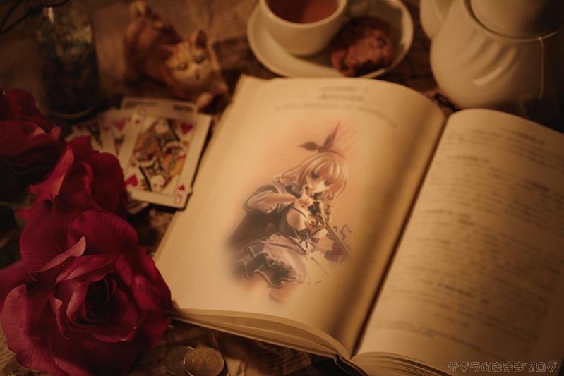 第一章『不思議の国の闇使い アリシア』