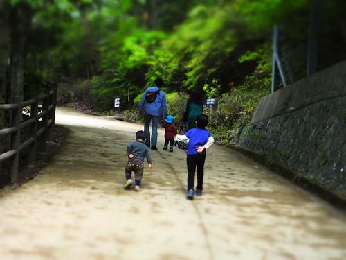 甲山森林公園にて (36)