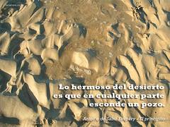 lo_hermoso_del_desierto