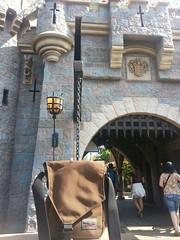 Best bag for the Happiest Place on Earth: Small Cafe Bag.