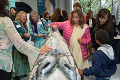 Inauguración Travesía: Journey of the Gray Whale