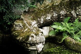 Siegfried's Dragon