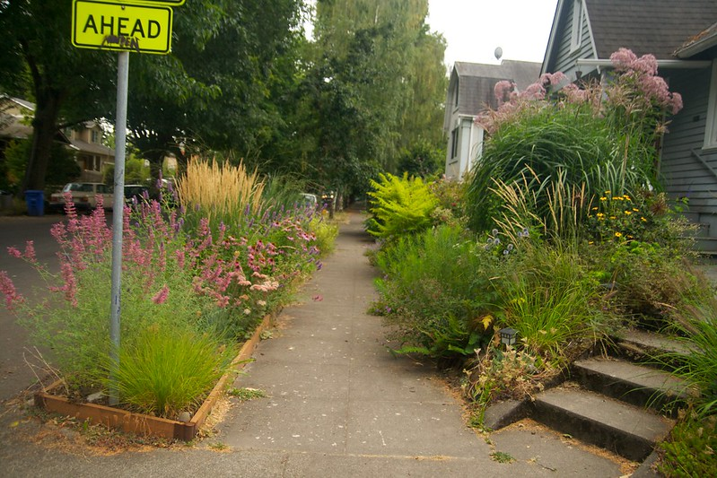 front border from north  3452