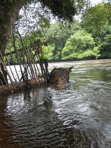 fish traps in the rapids
